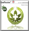 Dutch Passion ComPassion Female 10 Seeds